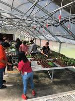 BCHS Agriculture Classes Growing Learners