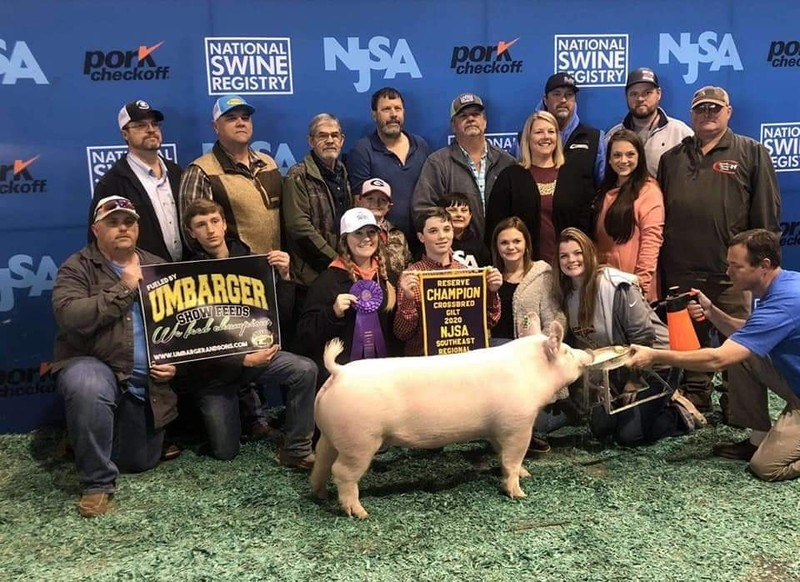 Brooks County High School FFA Student Captured Wins in Southeastern Swine Show